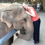 my oasis: healing with elephants in thailand by julie lemerond