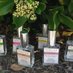 a scentsational giveaway from demeter fragrance