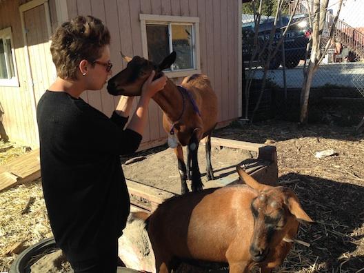 Sara and 2 goats