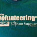 my buick bucket list trip: volunteering at the elephant sanctuary in tennessee