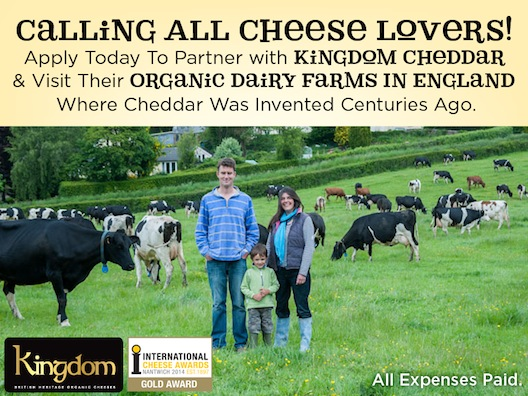 Kingdom Cheddar contest