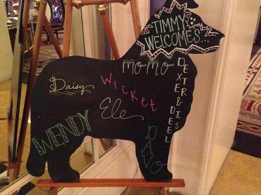Hotel Monaco dog welcome