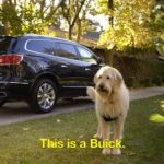 buick commercials have gone to the dogs!