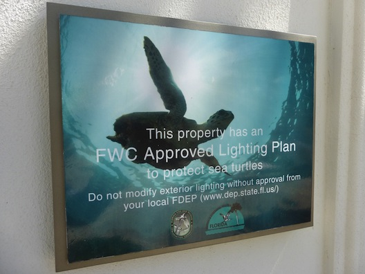 Marriott Oceana Palms turtle protection