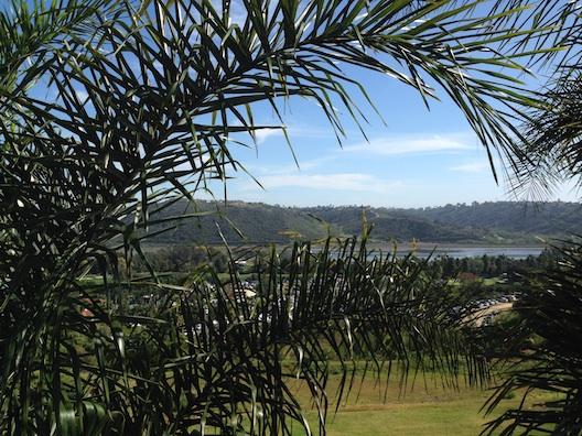 Park Hyatt Aviara view
